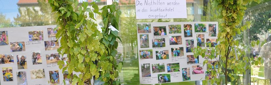 Lindenhof Grundschule in Berlin Tempelhof-Schöneberg